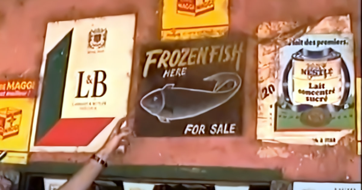 Frozen Fish Store