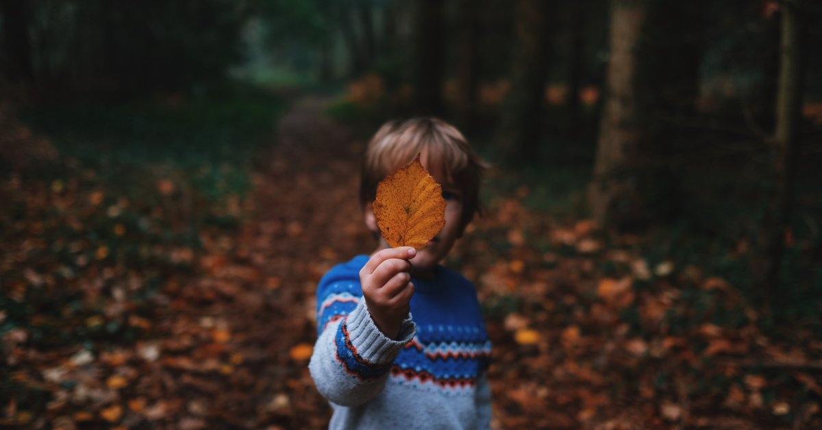 boy with maple leaf