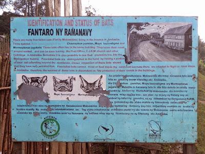 Bat Sign at Andasibe Post Office, Madagsascar