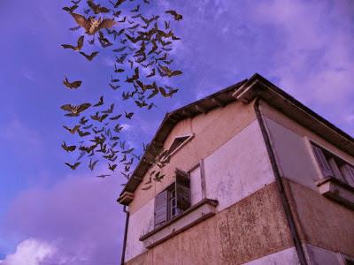 Andasibe Post Office with Fake Bats